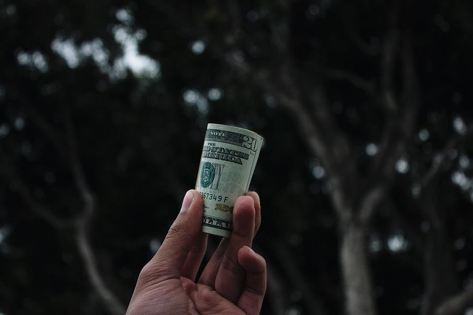 dolarová rolička
